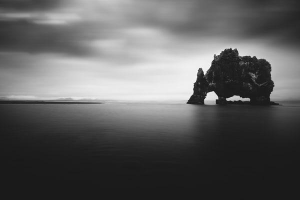 The Beast 1 Photography Art | stephanelacasa