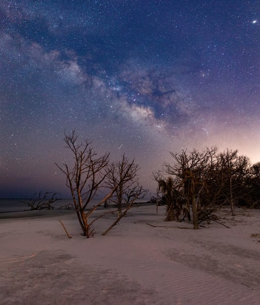 Starry Night on Driftwood Beach