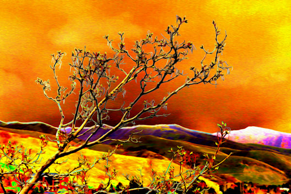 Img 0884 Utah Oils Solar Art | Oz Fine Art Studio