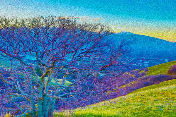 Img 0814 Utah Oils Art | Oz Fine Art Studio