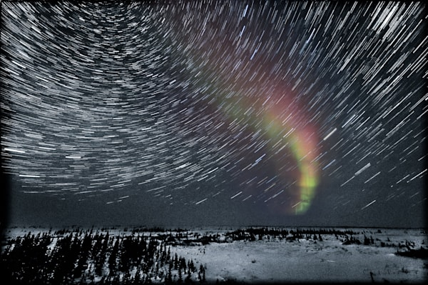 Aurora And Star Trails In A Snowy Landscape Photography Art | Carol Brooks Parker Fine Art Photography