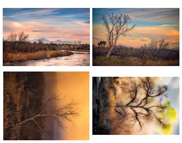 Folio - Sabino Creek Winter Landscapes