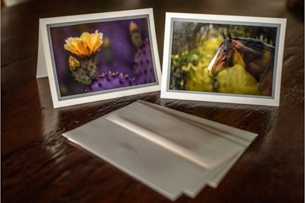 Greeting Cards Box Set of 8