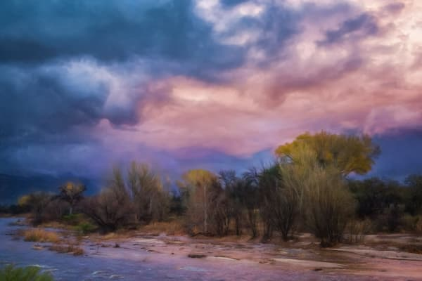 After The Rain Photography Art | Carol Brooks Parker Fine Art Photography