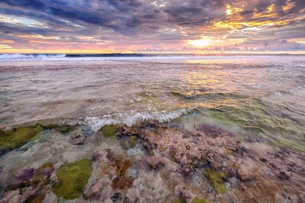 Fringing Reef #4 Wavelet Orig Photography Art by cbpphoto