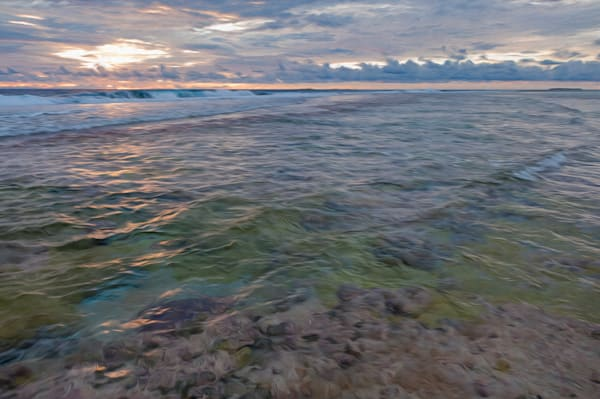 Fringing Reef #2 Lavender Ae Photography Art   Carol Brooks Parker Fine. Art Photography