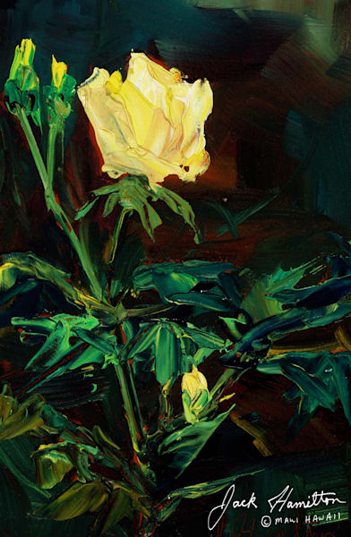 "#1457 ""Yellow Rose on Crater Road"""