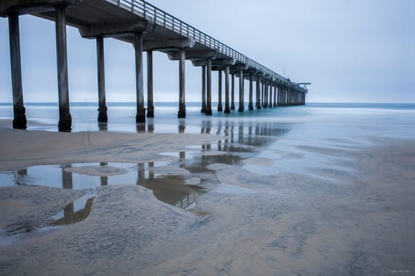 Scripps Pier Encounters