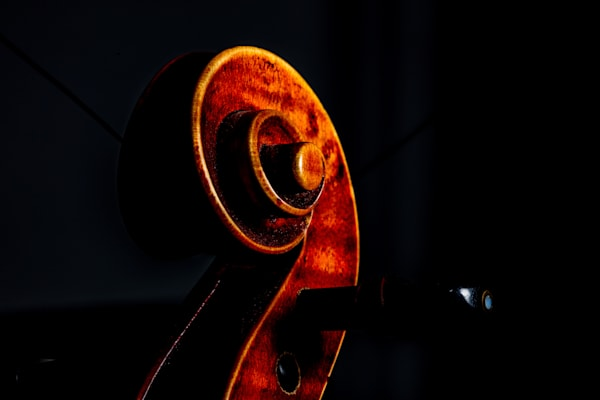 Color Violin Wall Art Photographs as Prints Canvas Metal