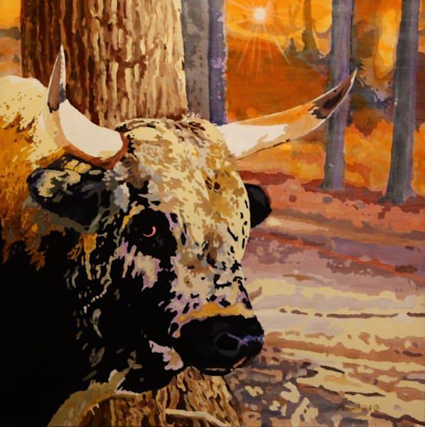 Krug Park Bull Acrylic For Sale As Fine Art by Dennis Broockerd.