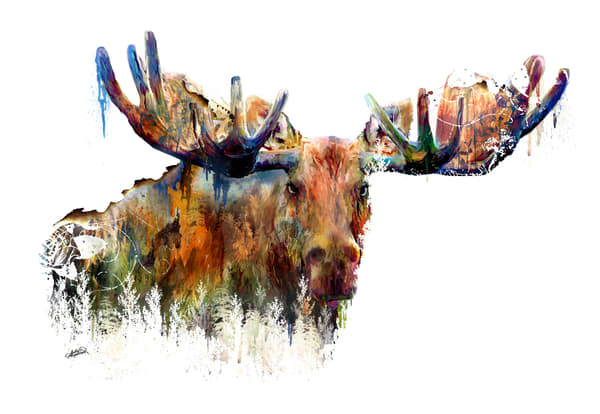 Landscape Moose Art double exposure art by Sally Barlow