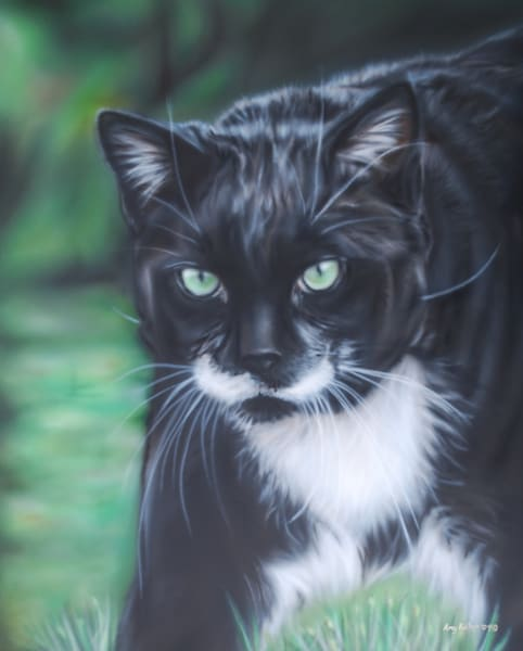 Pet Portrait by Amy Keller-Rempp - Cat