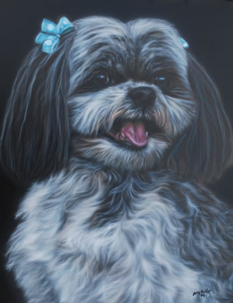Pet Portrait by Amy Keller-Rempp - Dog