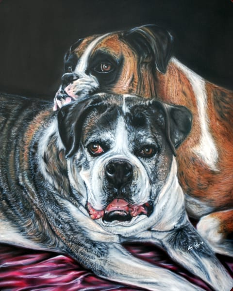 Pet Portrait by Amy Keller-Rempp - dogs - boxers