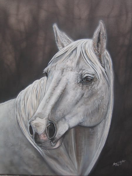 Pet Portrait by Amy Keller-Rempp, Horse