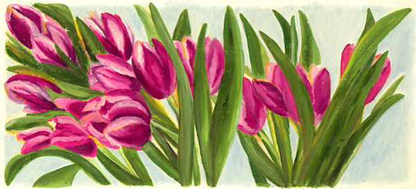Tulips fine art print by Amy Popp.