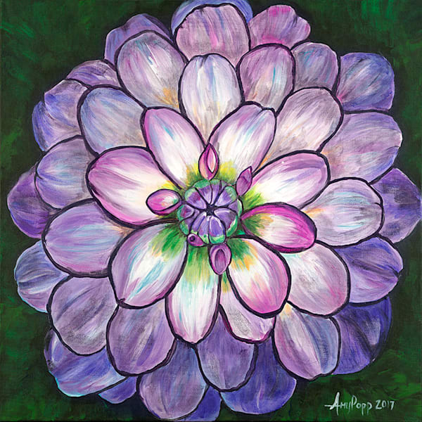 Dahlia fine art print by Amy Popp.
