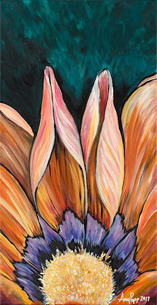 African Daisy orange fine art print by Amy Popp.