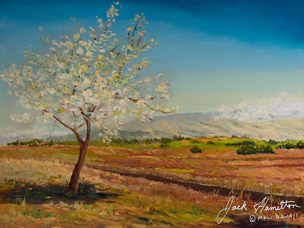 "#457B ""WHITE BLOSSOM TREE"" J.HAMILTON 2-1-1999© 36X48 OIL ON CANVAS.NEF"
