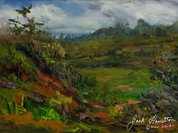 "#1307 ""PIIHOLO VIEW"" J.HAMILTON 5-10-2006© 12X16 OIL ON CANVAS .NEF"
