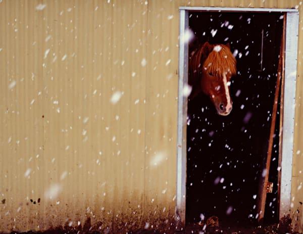It s Snowing