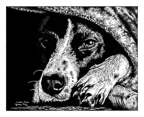 Under Cover  Art   Yvonne Petty Artist
