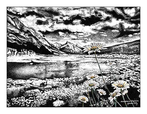 Mountain Daisies  Art   Yvonne Petty Artist