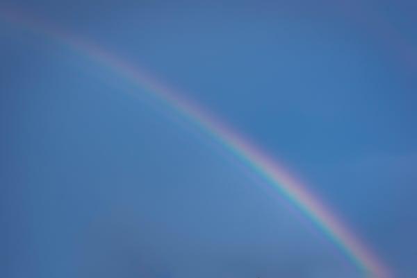 Rainbow Wonders   Susan J Photography