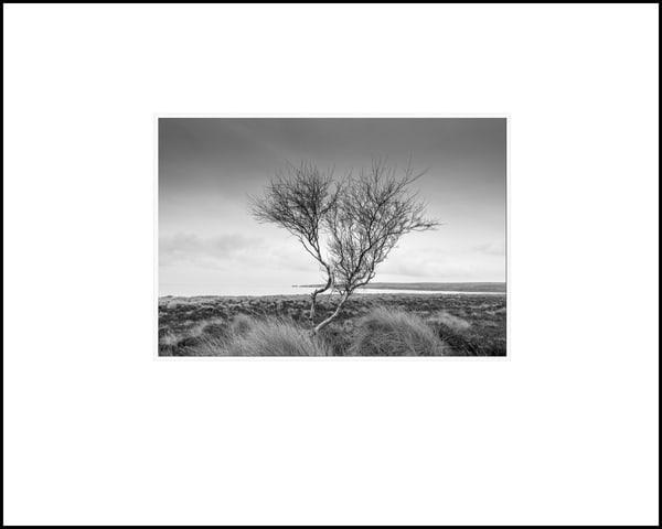 041 Art | Roy Fraser Photographer