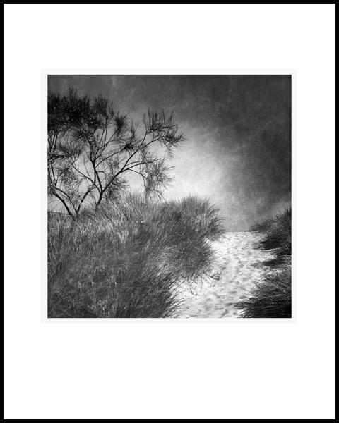 0102 Art | Roy Fraser Photographer