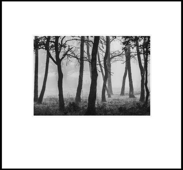 051 Art | Roy Fraser Photographer