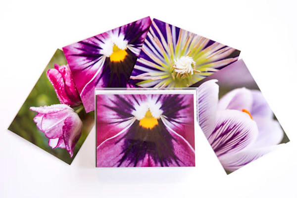 Purple Passion Notecards