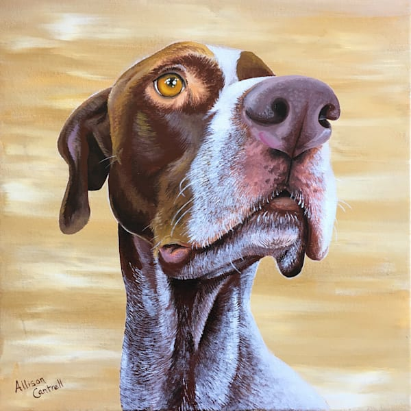 german shorthair pointer print