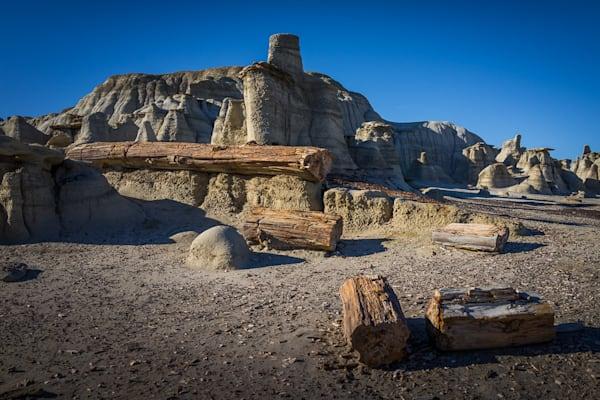 Bisti Badlands, New Mexico, Photography, bisti wilderness, hoodoos,  petrified tree, landscape,