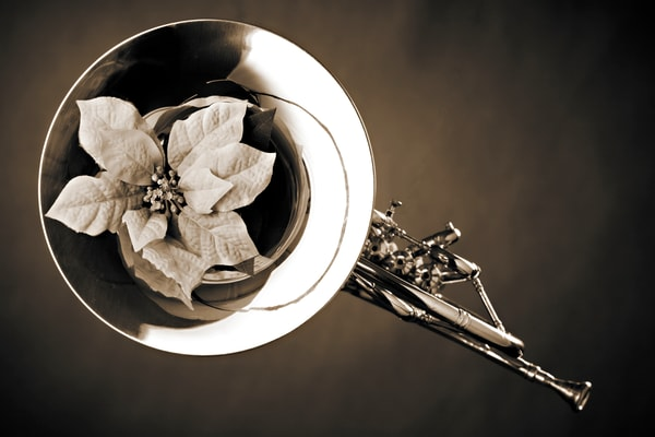 French Horn and Flower Wall Art 2080.25