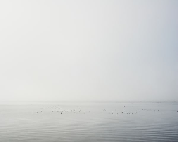 Clear Lake Fog