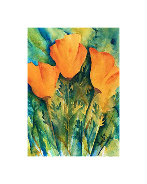 8x10 California Poppy Trio on Paper