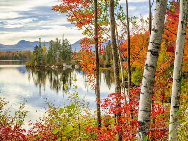Autumn Splendor At Jericho Lake Photography Art | Peter Wnek Photography