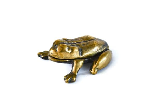 Brass Frog Vesta Case