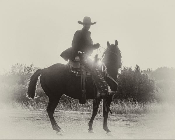 Outlaw Silhouette