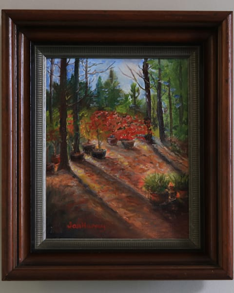 Shadows At Hidden Timbers Art by Midamericanartisans