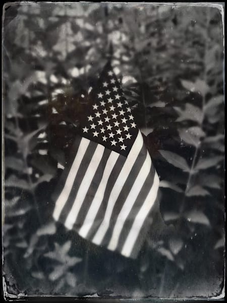 Old Glory In The Garden Fine Art Photography by Todd Breitling Flags and Signs Todd Breitling Art 