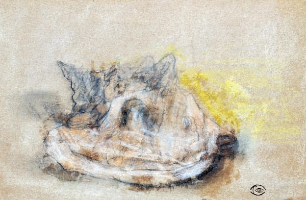 Old Shell  - Fine Art& Print on Paper, Canvas, Metal and more, by artist Irina Malkmus