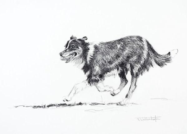 Raymond Wattenhofer Dog Study Pencil