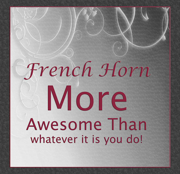More Awesome Than You French Horn Poster 2487.47