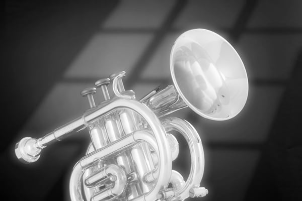 Trumpet Fine Art Photographs in Black and White