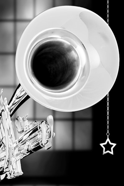 Trumpet Fine Art Photograph In BW 2502.30