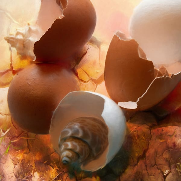 Photograph with Egg and Sea