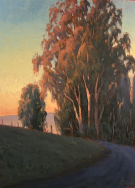 Eucalyptus Aglow, California landscape