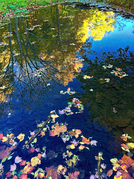 Autumn Pond Reflection|Fine Art Photography by Todd Breitling|Landscape Photography|Todd Breitling Art|